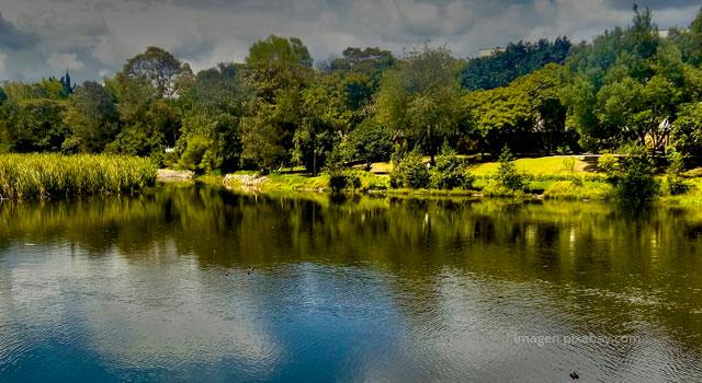 Apropiación de territorio: Minga del Rio Bogotá
