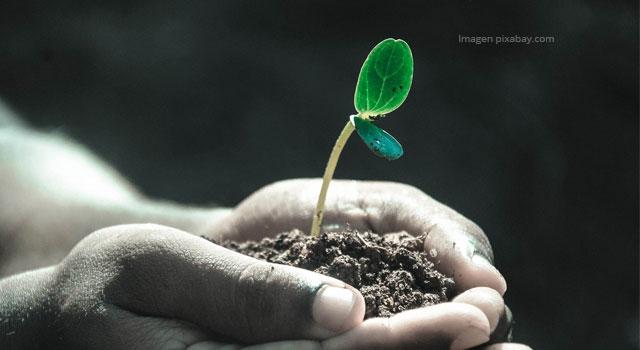 Cambio climático basado en proyectos