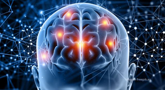 Conozca las ocho capacidades cognitivas que tiene el ser humano