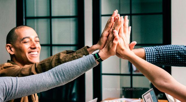 ¿Cuál es la importancia de los colegas en el sector educativo?
