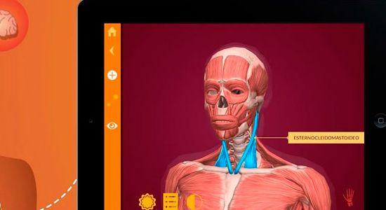 Arloon Anatomy: La forma más divertida de aprender anatomía ...