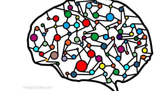 Dislexia, un problema de adaptación neuronal