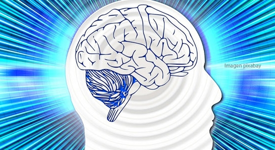 El cerebro matemático en el aula: algunas ideas clave