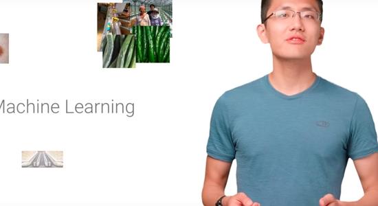 Google lanza recursos gratuitos sobre inteligencia artificial