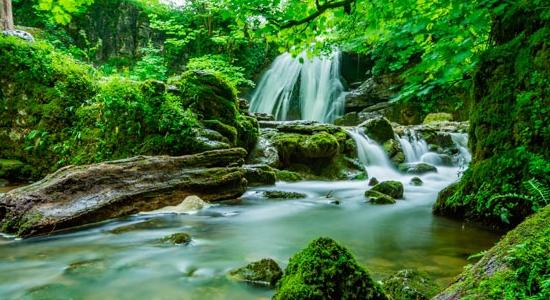 Las 4 acciones de las comunidades rurales para proteger el medio ambiente