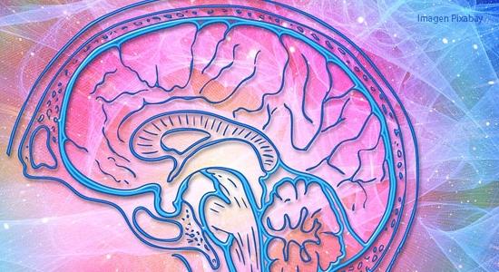 Taxonomía de Bloom. Habilidades de pensamiento del dominio cognitivo